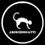 logo arischiogatti